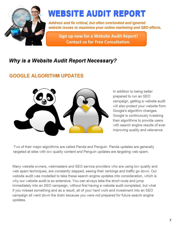 web-audit-UK-5